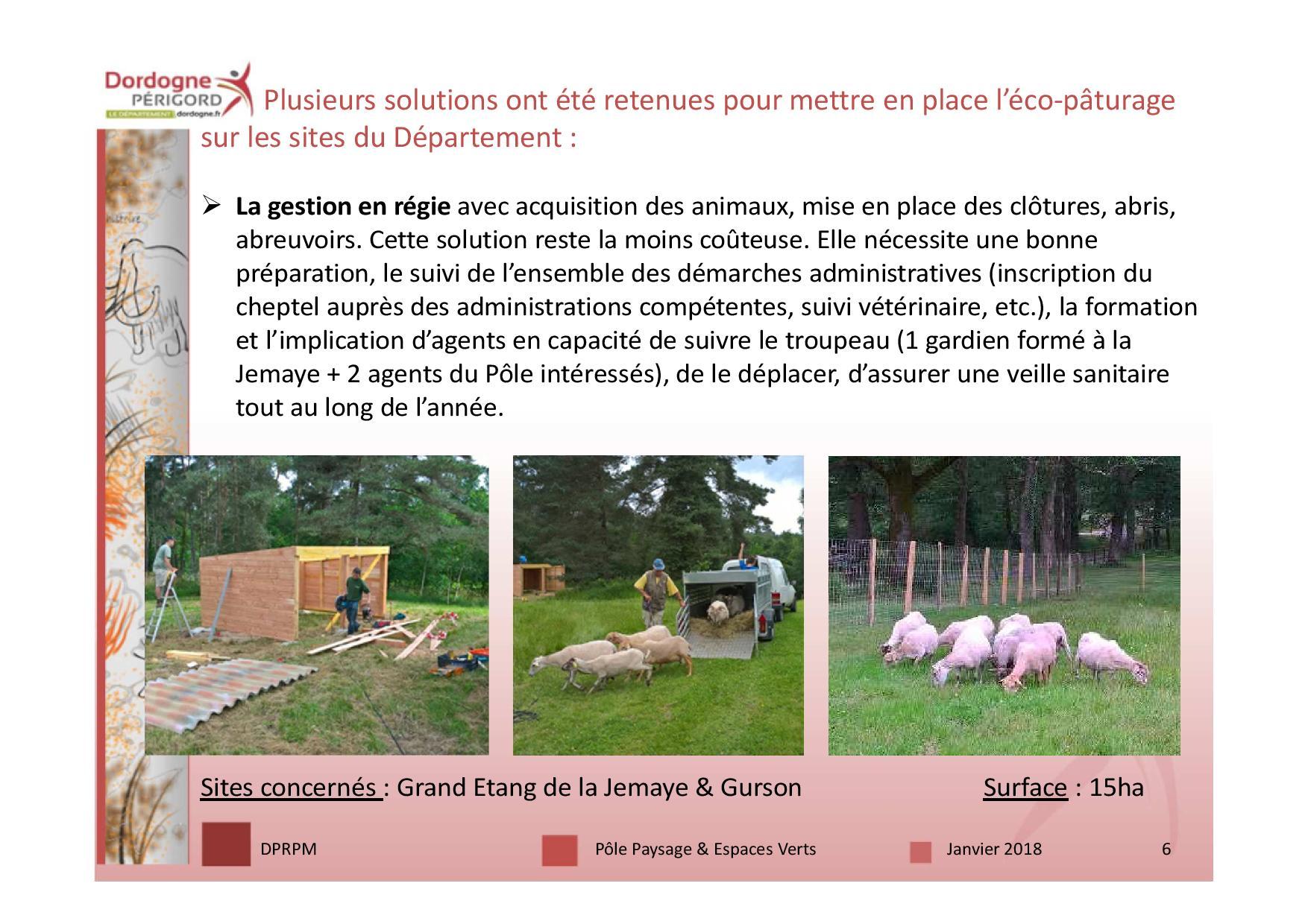 3 écopâturage 18 janv-page-006