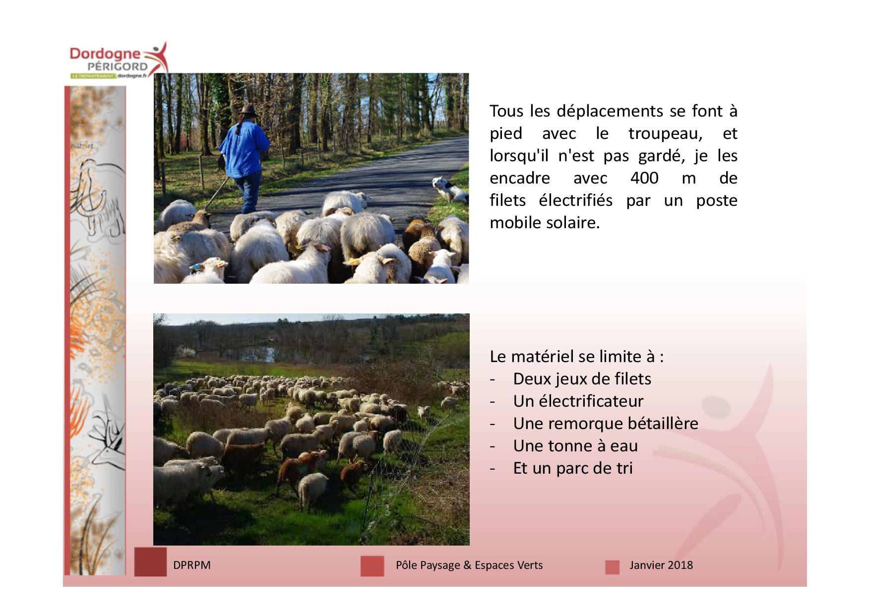 3 écopâturage 18 janv-page-012