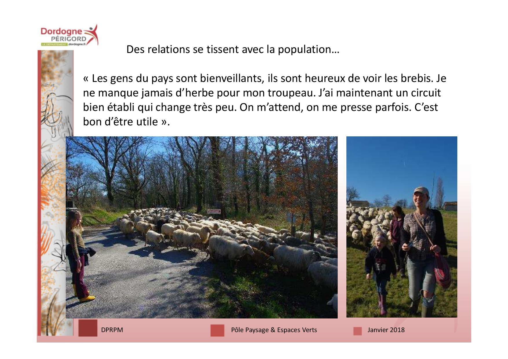 3 écopâturage 18 janv-page-014